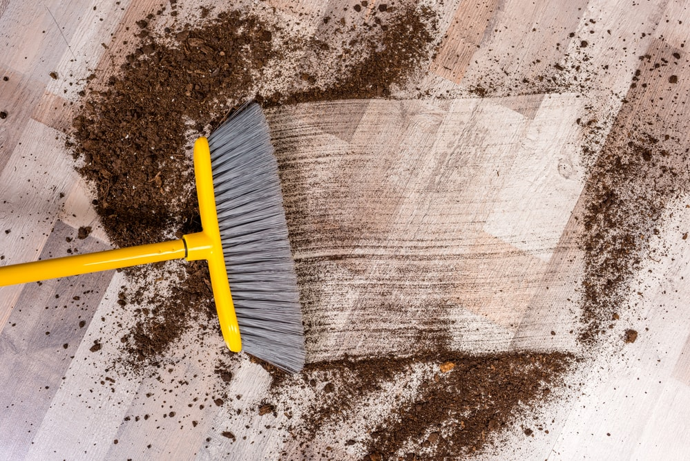 cleaning services for real estate agents